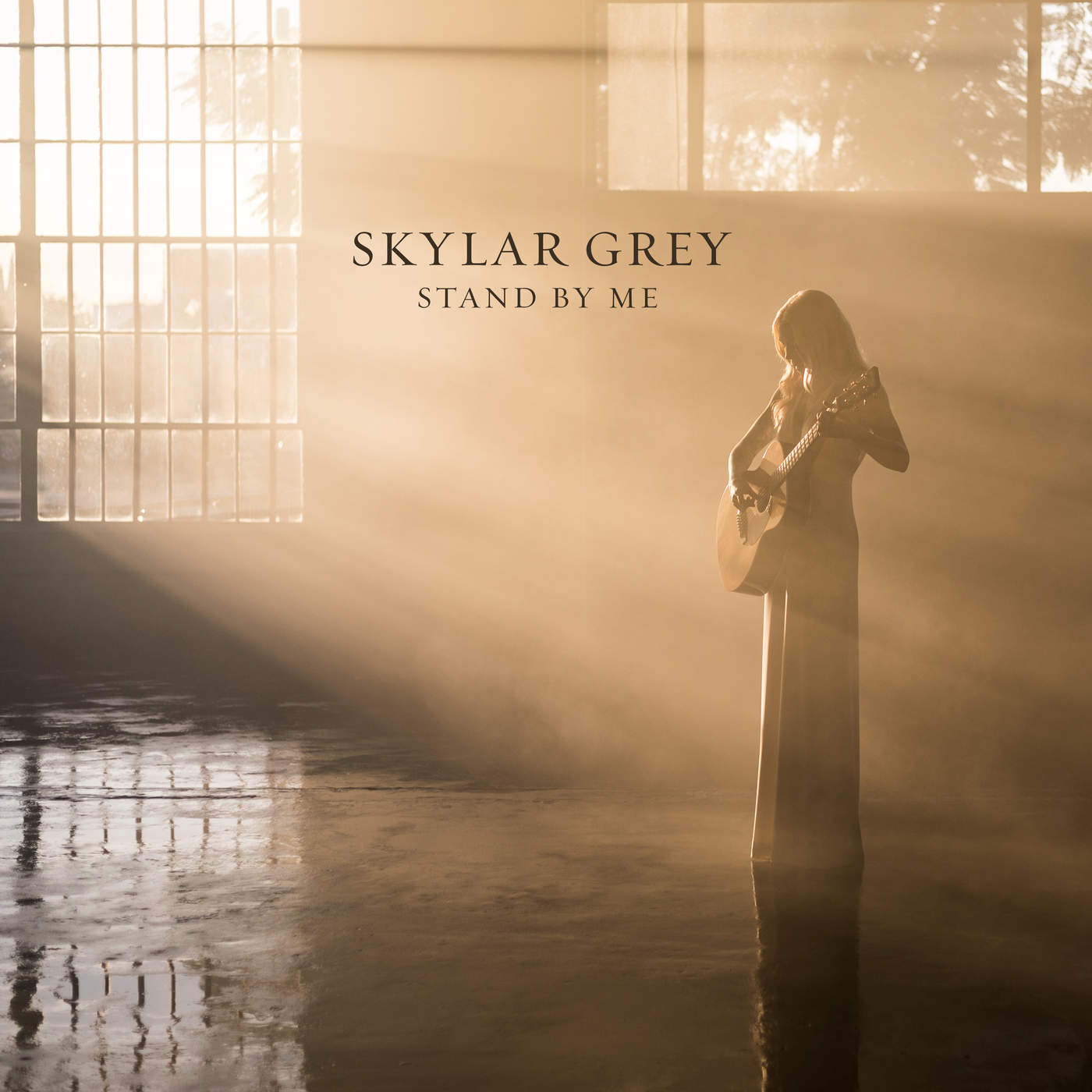 """Hear Skylar Grey's Full """"Stand By Me"""" Cover from Budweiser"""