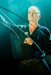 "Morrissey Teams Up with Billie Joe Armstrong for ""Wedding Bell Blues"" Cover"