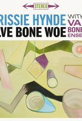 Review: Chrissie Hynde, 'Valve Bone Woe'