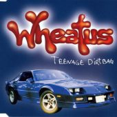 "Five Good Covers: ""Teenage Dirtbag"" (Wheatus)"