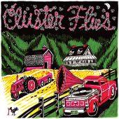 Review: Cluster Flies (Phish Tribute Album)
