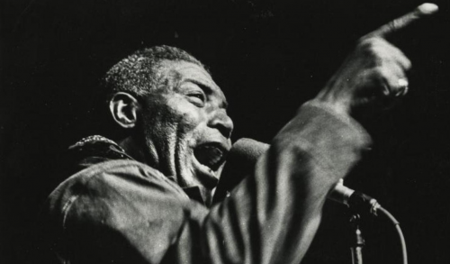 Howlin' Wolf covers