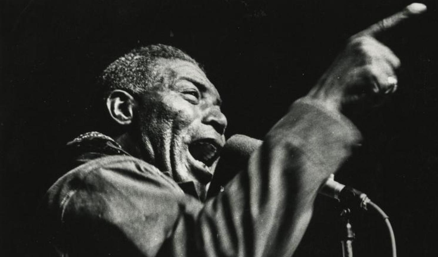 They Say It's Your Birthday: Howlin' Wolf
